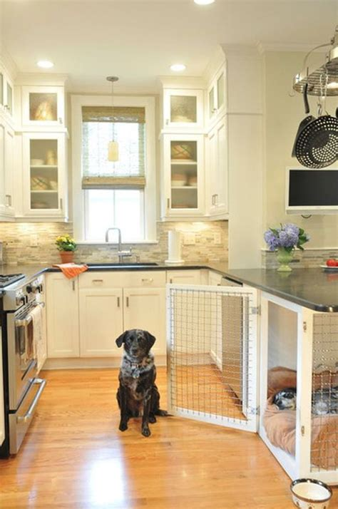 pet room ideas 20 cool laundry space for pet lovers decorazilla design blog