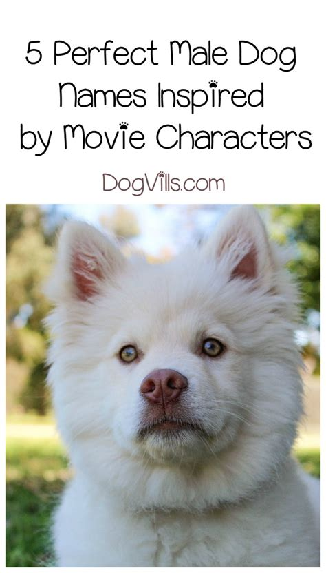 names inspired by names inspired by characters dogvills