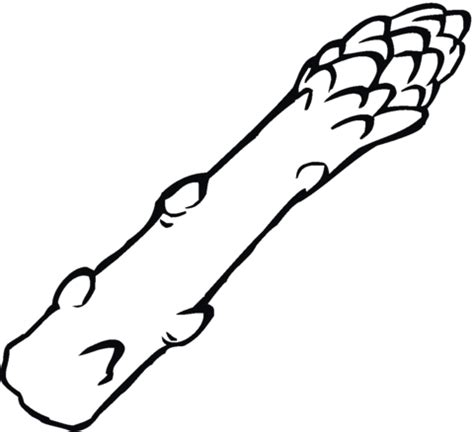 asparagus coloring page asparagus coloring page coloring pages