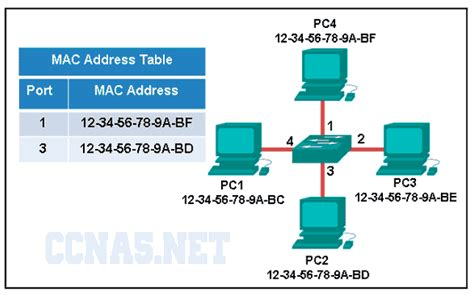 The Switch To Mac Part 1 Of 3 by Ccna 1 Chapter 5 V5 Answers 2016 Ccna5 Net Ccna