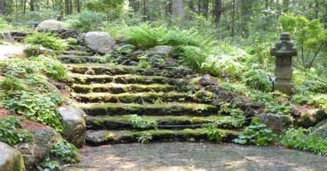 Tower Hill Botanical Gardens Boylston Ma Moss Steps Botanical Garden Massachusetts