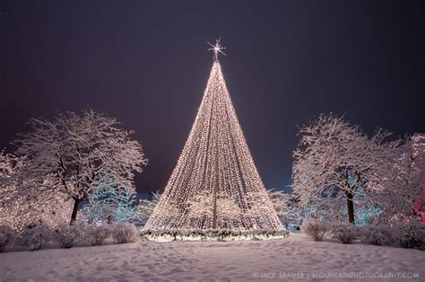 christmas tree lots in salt lake city utah page 3 mountain photographer a journal by brauer