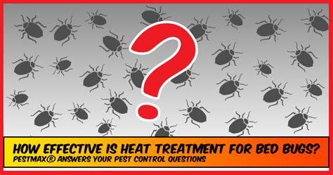 bed bug heat treatment effectiveness bed bugs archives pestmax