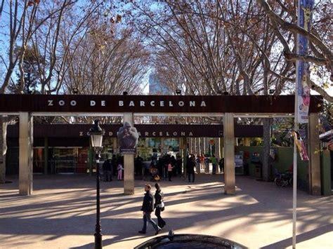 barcelona zoo reviews picture of barcelona zoo barcelona tripadvisor
