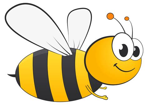 bee clipart honey bee vector png transparent image pngpix
