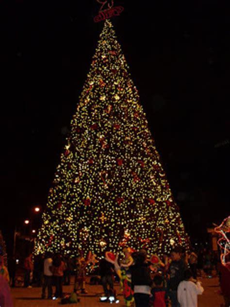 carol in central america christmas tree in guatemala city