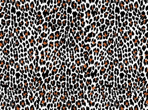 16 Vector Animal Print Images Animal Print Vector | leopard vector