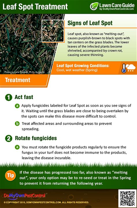 leaf spot treatment how to get rid of leaf