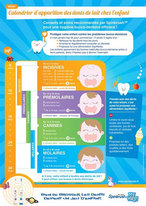 calendrier d apparition des dents de lait chez l enfant