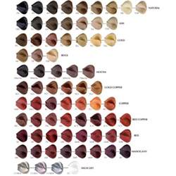 satin hair color reviews satin hair color r connection plus