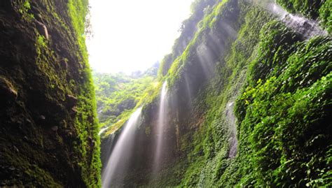 Explore Trip Waterfall Madakaripura ? Bromo and Ranu