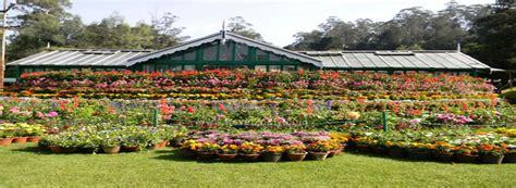 ooty botanical gardens ooty botanical garden botanical garden entrance fees