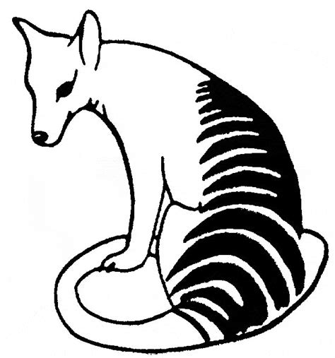 tasmanian tiger coloring page thylacine coloring page animals town free thylacine