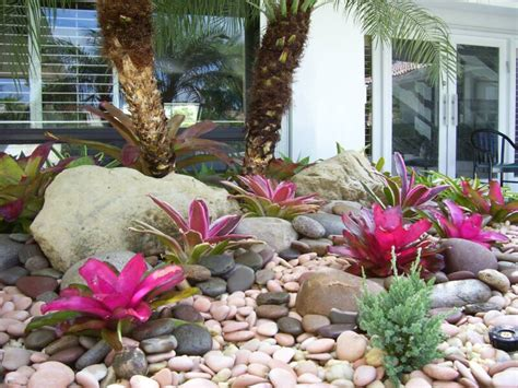 rock garden in florida tropical view landscape