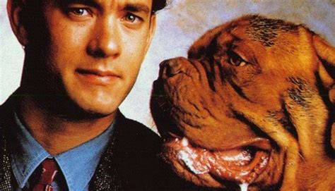 what of is turner and hooch five of our favorite tom hanks comedies ifc