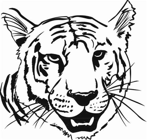 head tiger coloring pages gt gt disney coloring pages