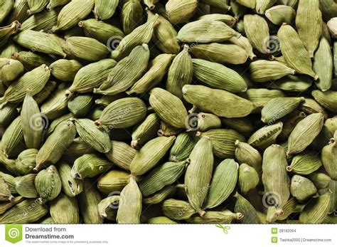 garcinia cambogia seeds for sale garcinia cambogia seeds for sale newhairstylesformen2014 com