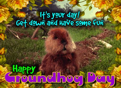 groundhog day is an event not a business strategy use the s p r i n g formula to unearth the opportunities burrowed within your business books groundhog day cards free groundhog day ecards greeting