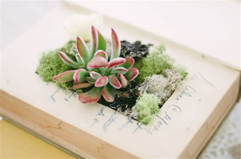Diy Book Planter by Diy Idea Upcycled Books For Your Interior