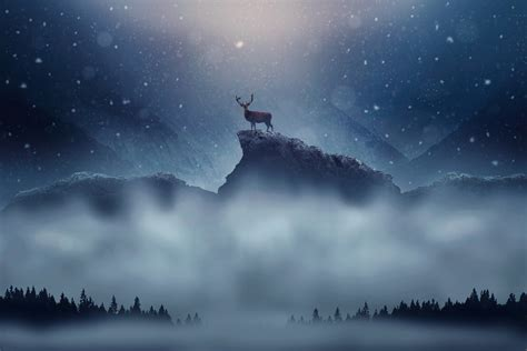 wallpaper deer snowfall winter peak hd animals