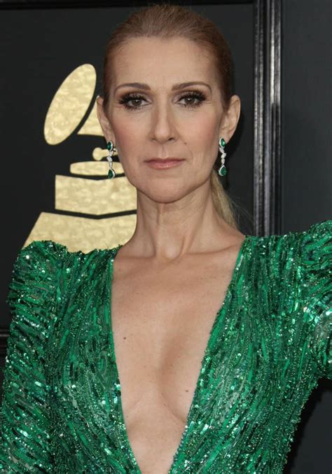 selin dion celine dion returns to grammys in zuhair murad dress and
