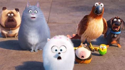 cinebox el mirador burgos cartelera mascotas la gu 237 a go la gu 237 a go