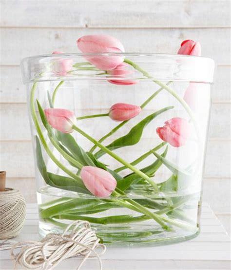 tulpen im glas die tulpe bringt frische mit sie symbolisiert den fr 252 hling