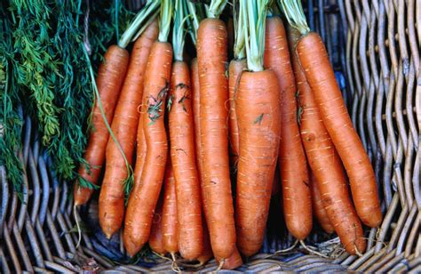 different colored carrots how do different color carrots taste