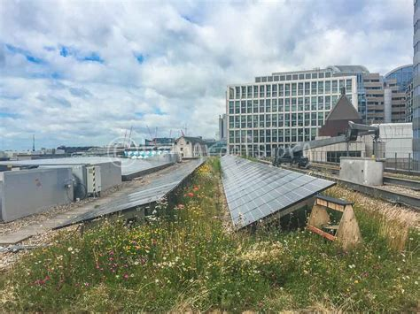 Power Bank Bio Solar biosolar roof gallery green roofs and solar power