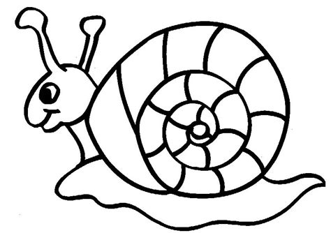 Snail Coloring Page snails coloring pages