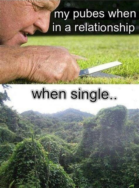 Single Relationship Memes - funny pictures 40 pics