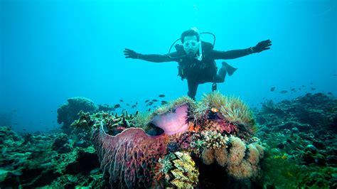 redang dive dive centre redang peninsula malaysia
