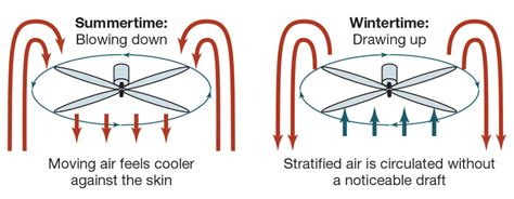 ceiling fan rotation for winter reversible ceiling fan wiring diagram ceiling fan