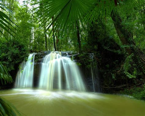 desktop wallpaper for eye protection 2015 hd eye protection wallpaper 12 waterfall in forest