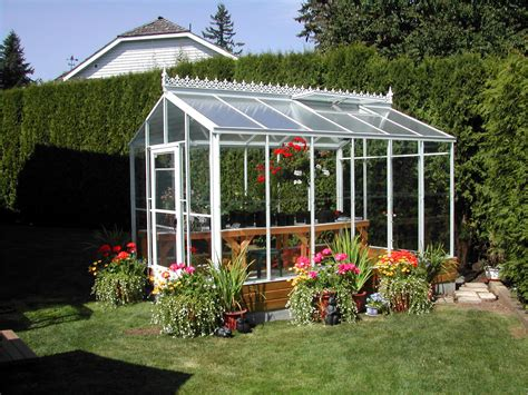 greenhouse in backyard traditional glass greenhouses sale gothic arch greenhouses