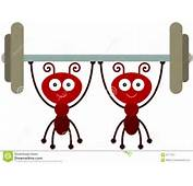 Cartoon Illustration Of Two Ants Helping Together To Carry A Barbell
