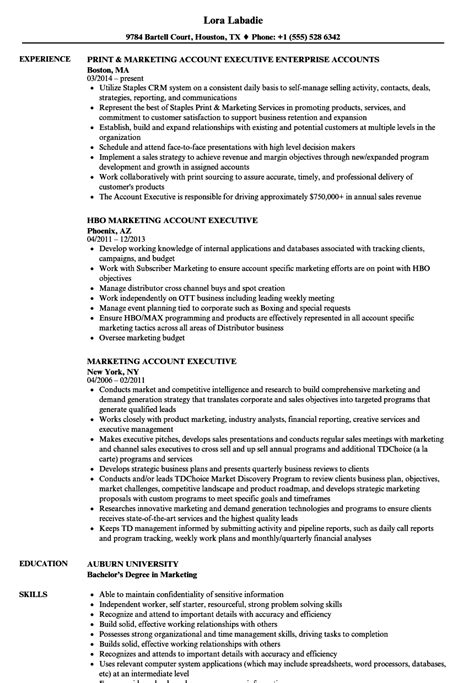 resume templates for account executives marketing account executive resume sles velvet