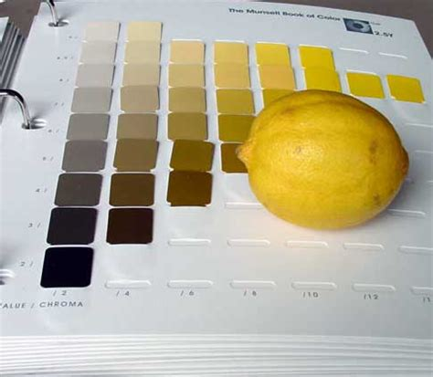 Munsell Book Of Color