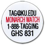 monarch watch migration tagging tagging monarch watch migration tagging tagging monarchs