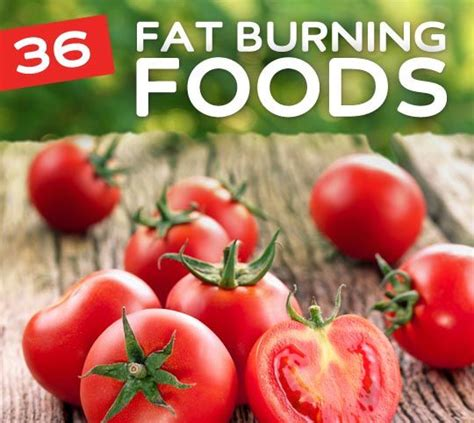 Ultrashape Lose Weight Burn Without A Diet by 36 Foods That Burn Help You Lose Weight Food