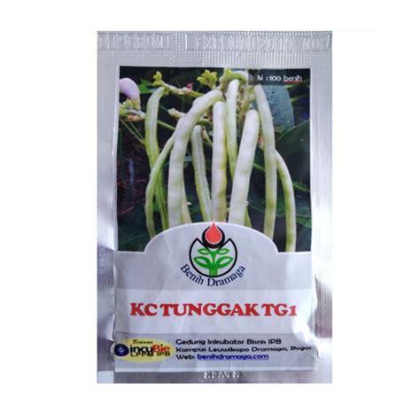 Benih Biji Kacang Panjang Putih Isi 20 Biji Benih benih kacang tunggak hijau ipb tg1 100 biji dramaga