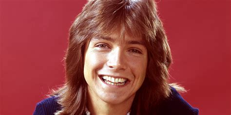australian actress sues magazine david cassidy der ex teenie star leidet an demenz x