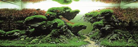 Aquascape Malaysia by International Aquatic Plants Layout Contest 2013 Ada