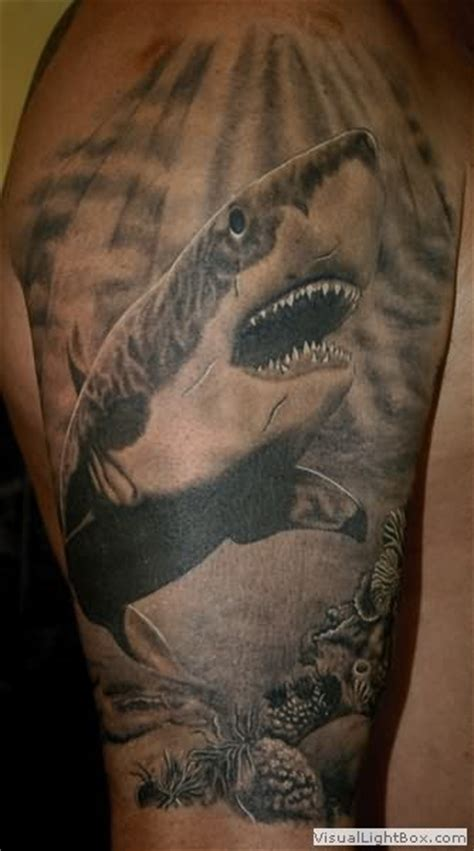 Great Grey Pictures Tattoos Photos | great grey shark tattoo