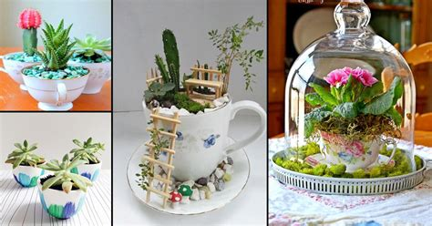 cute diy teacup garden ideas creative teacup planters
