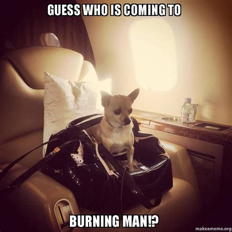 Who Meme - guess who is coming to burning man make a meme