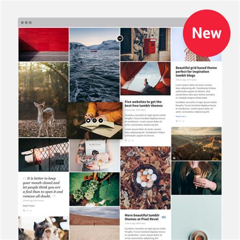 themes for tumblr new premium tumblr wordpress themes pixel revel