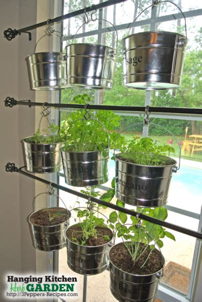 kitchen herb hanging kitchen herb garden