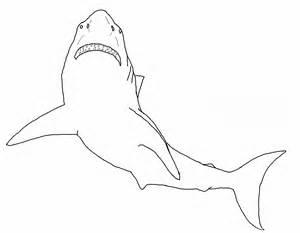 sch 246 ne malvorlagen ausmalbilder haifisch ausdrucken 3