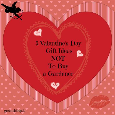 5 Valentines Day Gifts by 5 Valentines Day Gift Ideas Not To By A Gardenergreenside Up